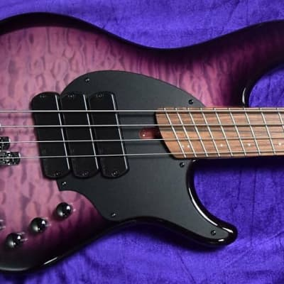 Dingwall Combustion (4-String), Ultra Violet / Pau Ferro / 3 Pickups *In Stock !