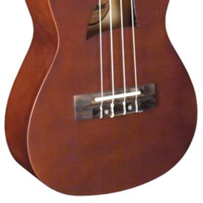 Eddy Finn EF1-C Concert Ukulele  Basswood Concert Size Ukulele, Satin Mahogany for sale