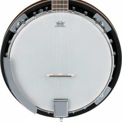 Ibanez B50 FM 5-String Banjo - Closed Back, Resonator for sale