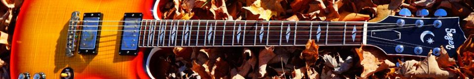 Seger Guitars