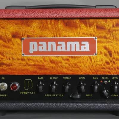 "Panama ""Five Watt""-2 Channel-4 Voicing Tube Studio Head- Sunburst Figured Mango Graphite/Scarlet"