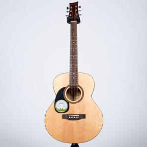 Beaver Creek BCTF101L Left-Handed Folk Acoustic Guitar BCTF101 for sale