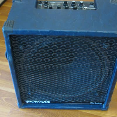 Polytone Mini Brute 3 for sale