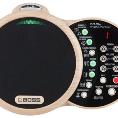 Boss DR-01S Rhythm Partner Drum Machine
