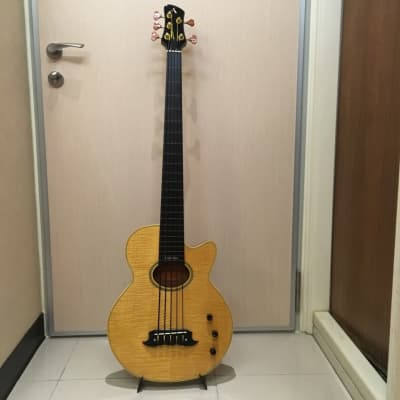 Athlete Acoustic Fretless 5-string Bass for sale