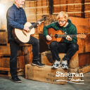 Sheeran by Lowden S-01 PRE-ORDER Walnut/Cedar Guitar