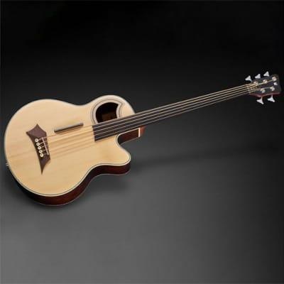 Warwick Alien Deluxe 5-String Acoustic/Electric Bass Gutiar for sale