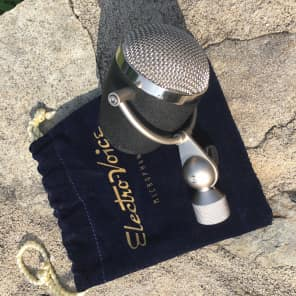 Electro-Voice Raven Cardioid Dynamic Microphone