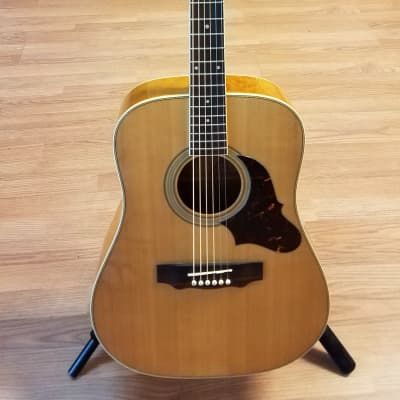 BC Rich Rico RW-9C dreadnought acoustic 1980ish for sale