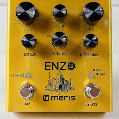 Meris Enzo (Multi Voice Intrument Synthesizer Pedal) Brand New