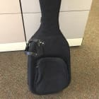 Reunion Blues Two-Guitar Double Gig Bag (barely used) - Free Shipping image