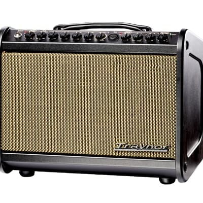 ** DEMO ** Traynor Acoustic Amp Mini for sale