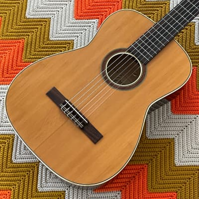 Goya/Greco GR-1 - 1970's Made in Yugoslavia by Goya of Sweden 🇸🇪!! - Super Rare and Beautiful Guitar! - Lovely Instrument! - for sale