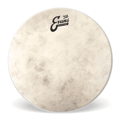 "Evans TT10C7 Calftone Tom Batter Drum Head - 10"""