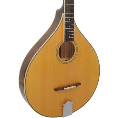 Gold Tone Banjola Solid Spruce Top Acoustic Woodbody Banjo