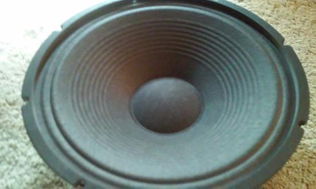 Recone Service Celestion Speaker Re-Cone Repair Parts Blown Speaker PMR  Speaker Repair