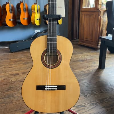 Altamira N300 Flamenco 2021 for sale