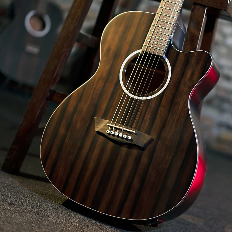 Washburn Deep Forest Ebony ACE Acoustic Electric Guitar