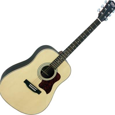 Storm  D80SN acoustic guitar for sale