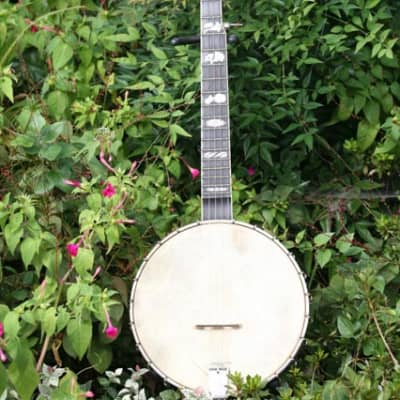 Wildwood Heirloom Banjo Lefthand for sale