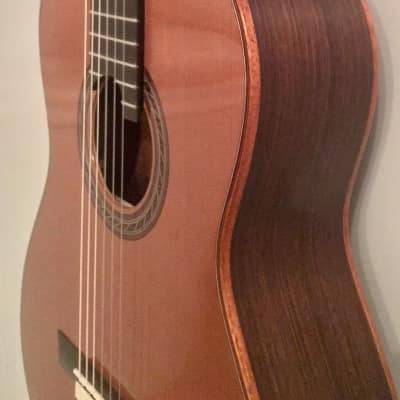 Kenny Hill New World Performance, Double-Top, Indian/Cedar for sale