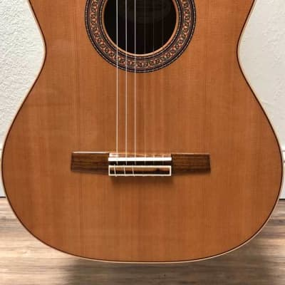 Lyon & Healy LH-G Classical Guitar The Grenadilla for sale