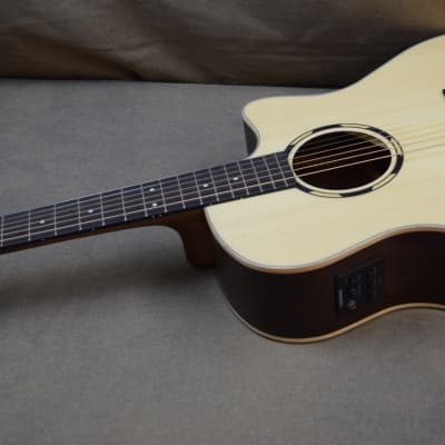 Washburn WLO20SCE Cutaway Orchestra Body Shape w/ Electronics Natural