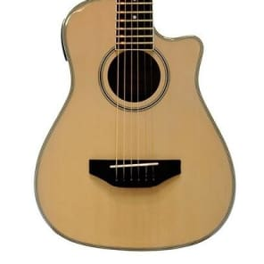 Beaver Creek Traveller guitar natural for sale
