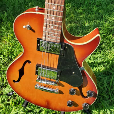 Electra Semi-Hollowbody for sale