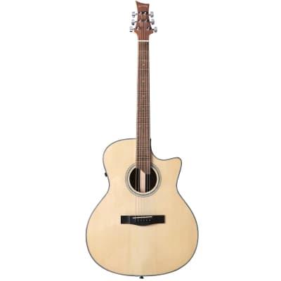 Riversong P551CE-A guitare folk électro-acoustique auditorium for sale