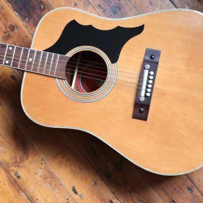 Vintage Eko Factory Eros 606 c.1970 natural + Luthier Setup for sale