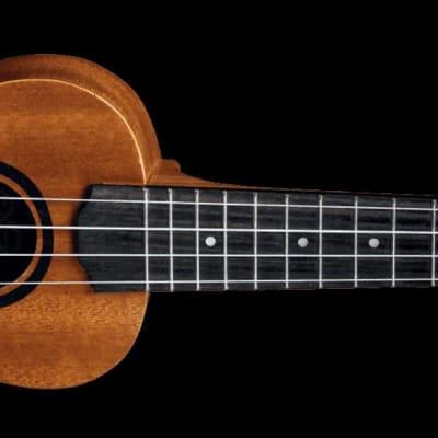 Lg Tku10s -ukulele - Natural for sale