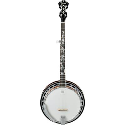 Ibanez B200 5-String Closed Back Banjo-Natural