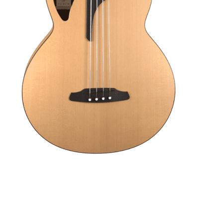 Furch Bc 61-CM 4 LR Baggs EAS-VTC Electro-Acoustic Bass Guitar + Bag for sale