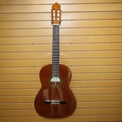 Classical Guitare Antonio Sanchez model 1010 in excellent condition for sale