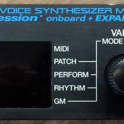 Roland JV-1010 64-Voice Expandable Synthesizer Keyboard Sound Module