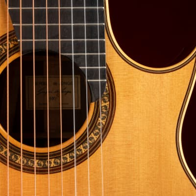 1981 Sergei de Jonge 10 String Classical Guitar - Brazilian Rosewood, Luthier Letter of Appraisal for sale