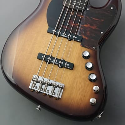 Alleva Coppolo 2020 Namm Show Limited Edition LG5 -2Tone Burst- [GSB019] for sale