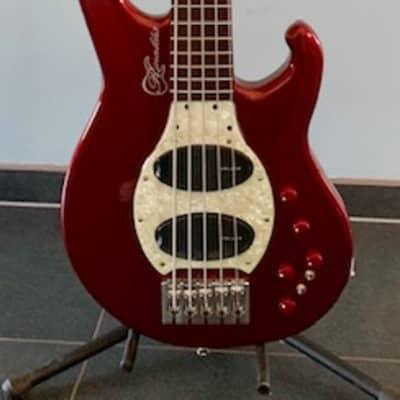 Rinaldis Custom Basses EvoluZione RED Edition 522 for sale