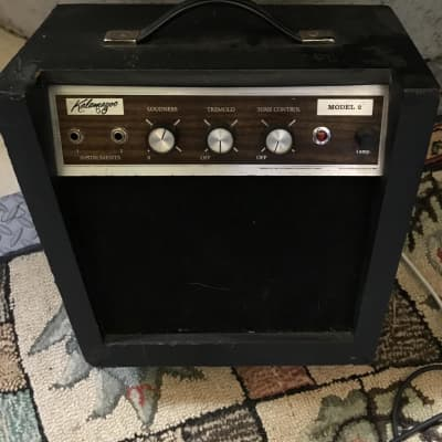 Kalamazoo Model 2 Amp for sale