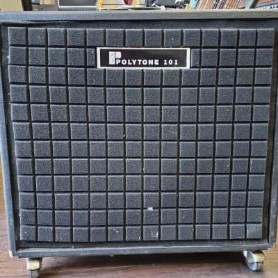 POLYTONE 101 CUSTOM BASS AMP for sale