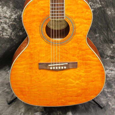 fender telecoustic standard acoustic guitars for sale in australia guitar list. Black Bedroom Furniture Sets. Home Design Ideas
