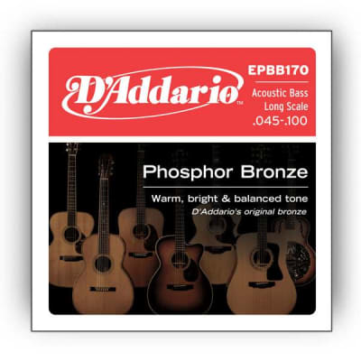 D'Addario Phosphor Bronze Acoustic Bass, Long Scale, 45-100