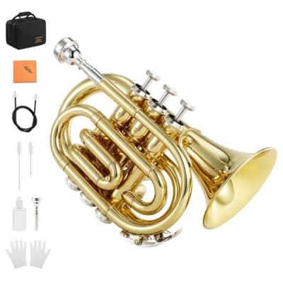 Standard Pocket Trumpet Bb Full Kit With Case & Accessories Bundle