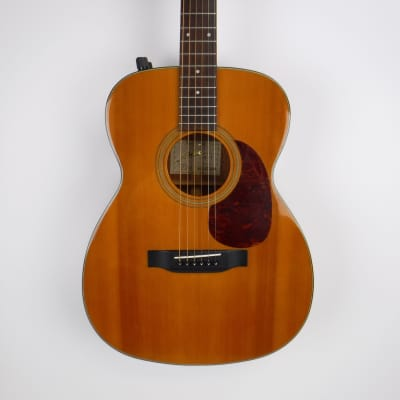 Used Fenix B-1 Acoustic-Electric Guitar with hard case MIK for sale
