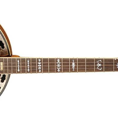 Washburn B120K 5-String Banjo Natural Distressed