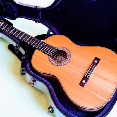 VV:  Hippner Torres Maple Classical Especiale, AMAZING wood, great sound, $250 case, BEST PRICE read