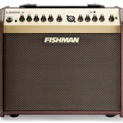 Fishman Loudbox Mini Bluetooth 60-Watt Acoustic Guitar Amplifier for sale