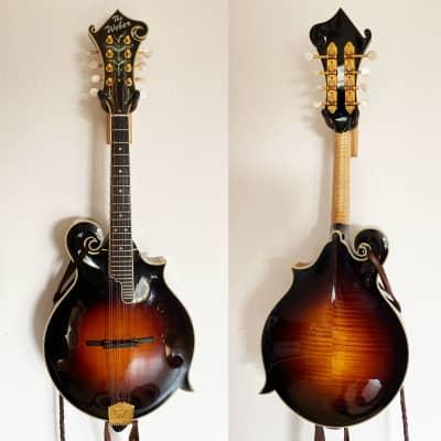 Mandolin - Custom F-Type Weber Fern, Hoffee Carbon Fiber Case, K&K Internal Pickup