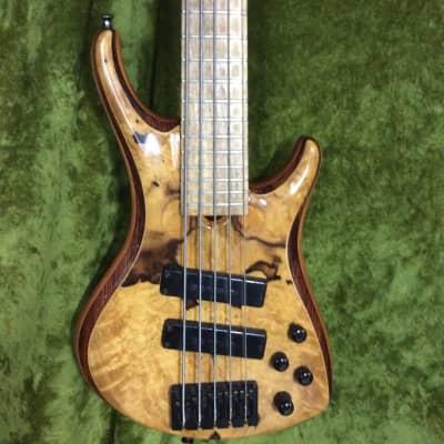 Roscoe LG 3005 Custom 5 String Bass  (Katalox top  Cedar body) for sale